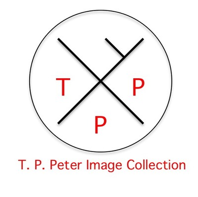 *T. P. Peter Image Colleciton - Logo (Red)